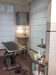 Salle de chirurgie clinique vétérinaire Bruxelles