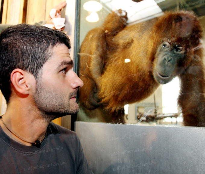 soigneur zoo